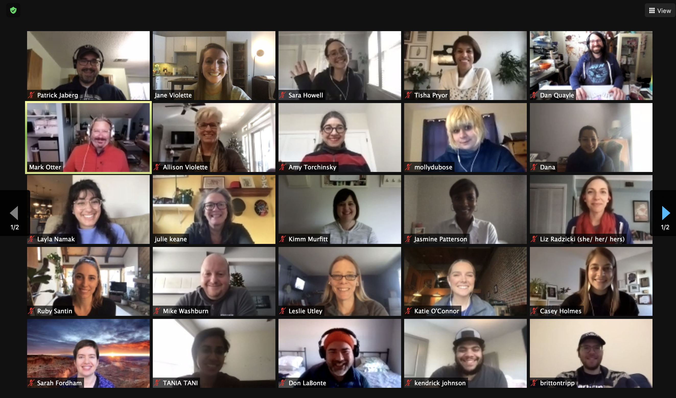 Screenshot of a Zoom video call with multiple faces on the screen in grid view